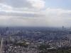 Tokyo skyline wide-view